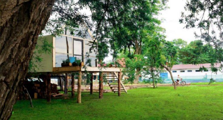 Domek na drzewie - Mielno1
